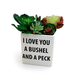 Bushel and a Peck Planter, Container, Indoor Planter