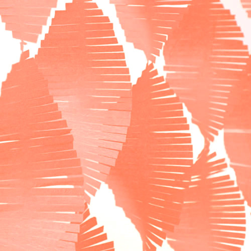 Orange Fringe Garland Streamer Party Decoration for kids birthday parties, weddings, photo booth backdrops and baby showers