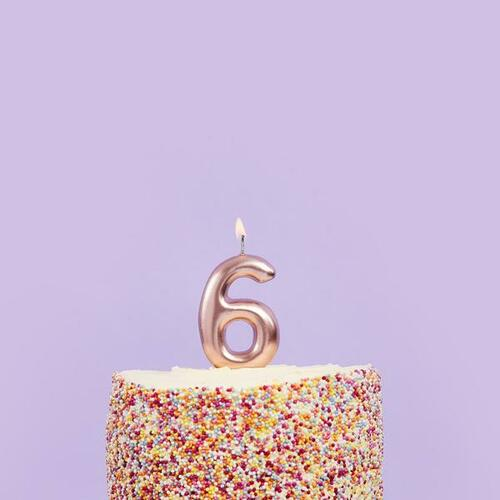 Rose Gold 6 Number Candle for Birthday Cakes and Anniversaries