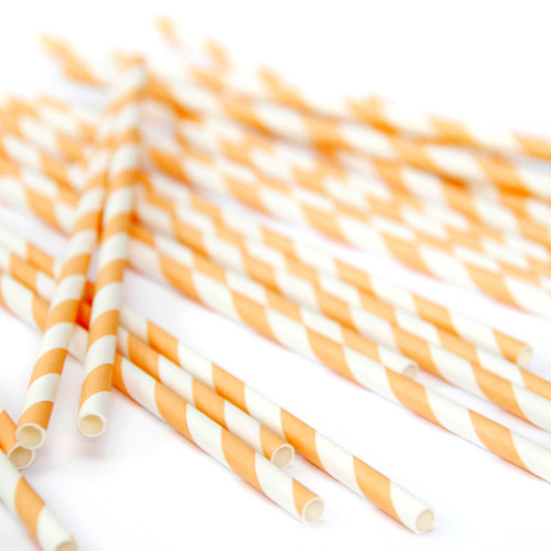 Orange Stripe Paper Party Straws
