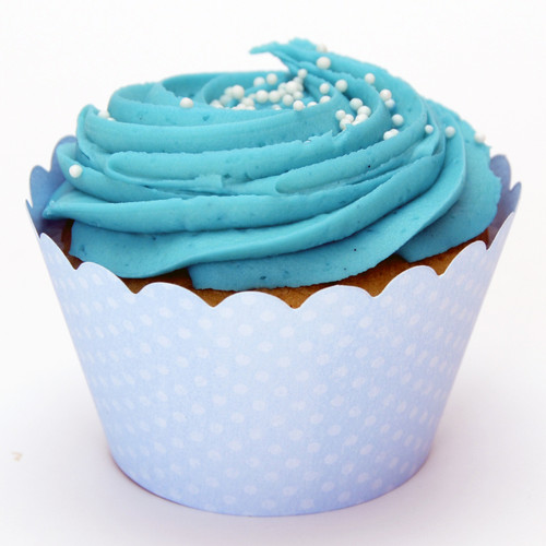 Light Blue Cupcake Wrappers