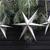 Silver Glitter Paper Star Decorations