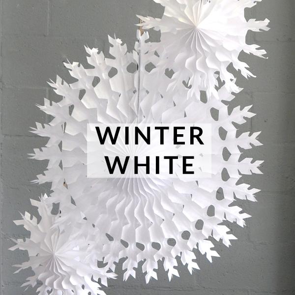 christms-winter-white-banner.jpg