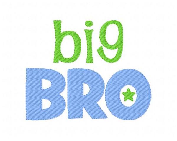 Big Bro Brother
