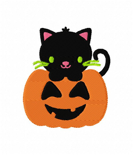 Cute Kitty Cat in Halloween Fall Jack O Lantern Pumpkin