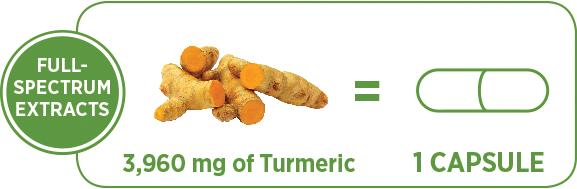 turmericforcetip.png