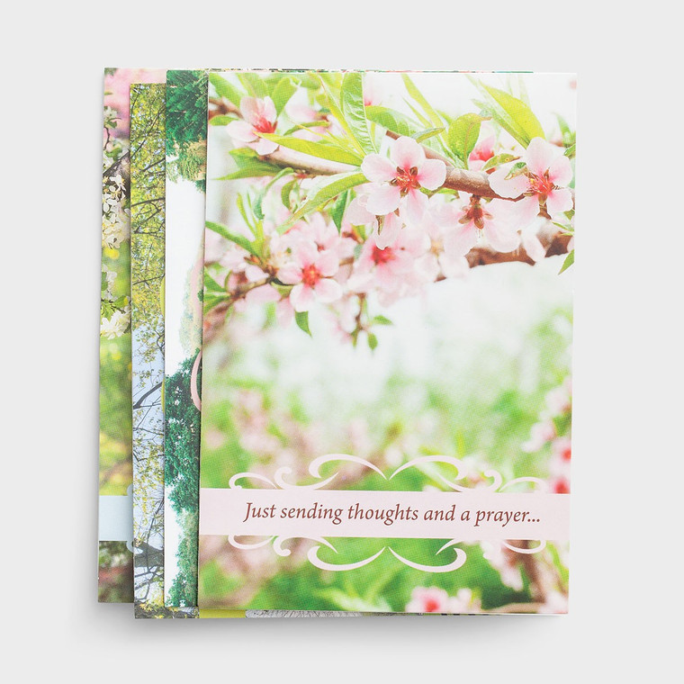 DAYSPRING BOXED CARDS - Get Well - Spring Time
