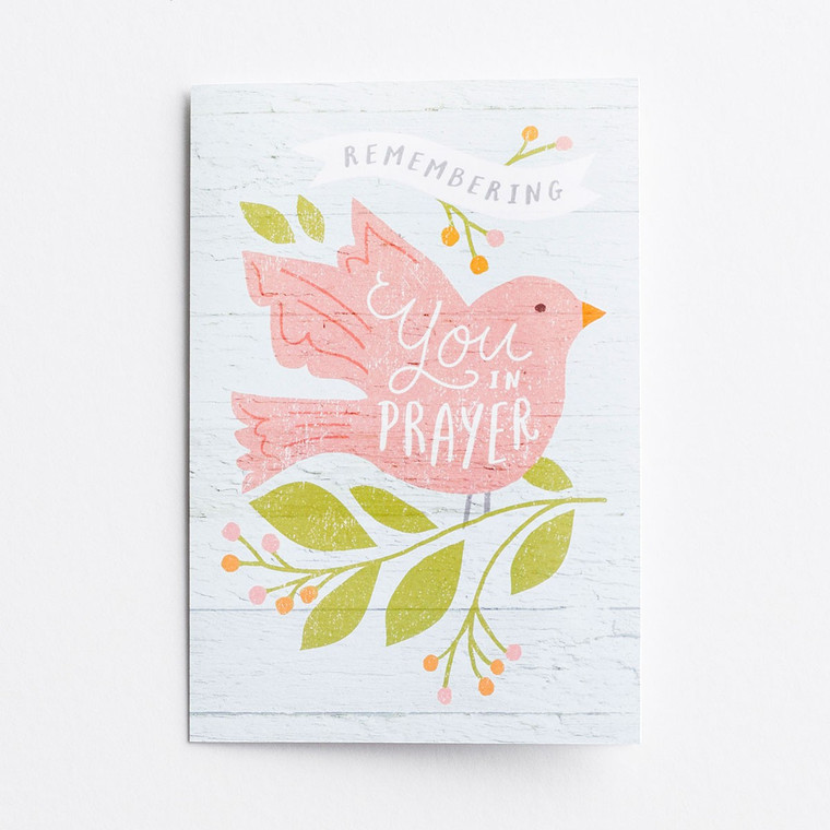 DAYSPRING BOXED CARDS - Praying for You - Remembering You - KJV