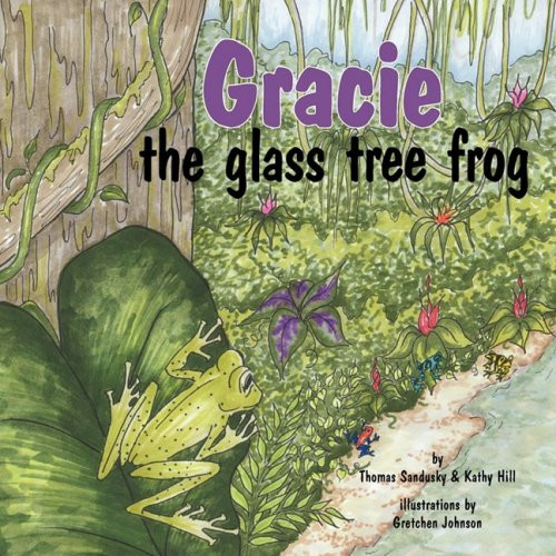 Gracie, the glass tree frog