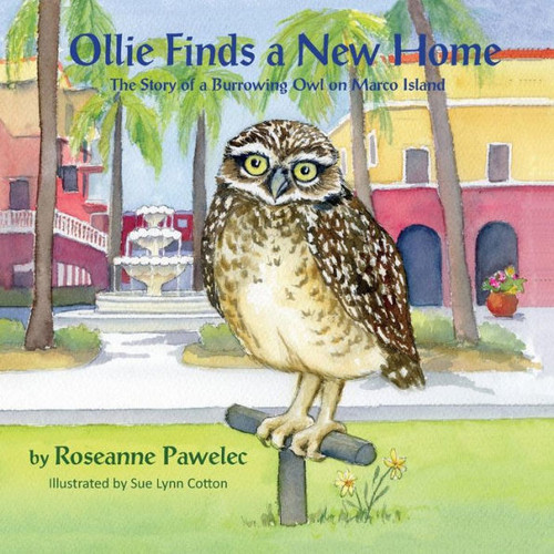 Ollie Finds a New Home, The Story of Burrowing Owl in Cape Coral