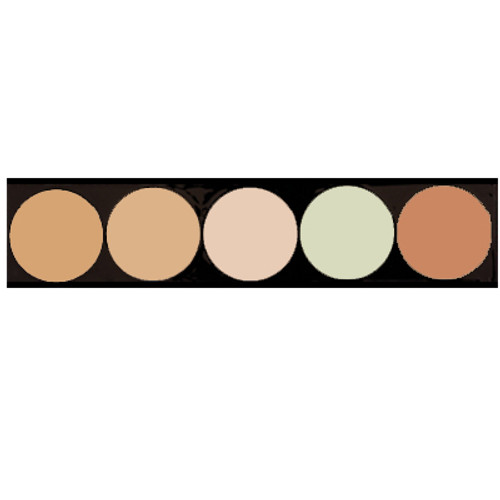 5 pan palette showing 3 corrector shades and 2 conceal shades.