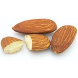 Sweet Almond Carrier Oil