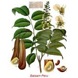 Balsam Peru (France) Wild Crafted Essential Oil