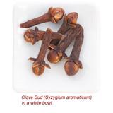 Clove Bud Organic Essential Oil