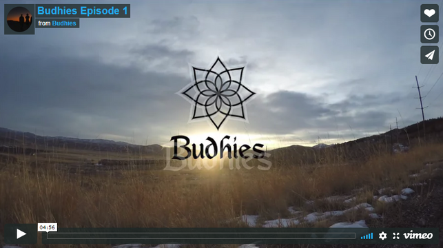 #Budhies Episode 1 Dropping Today