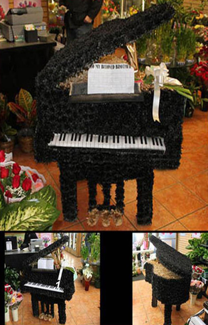 The Piano-FNPIA-01