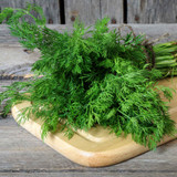 Buy Wild Fernleaf Dill Infused Olive Oil from Squizito Tasting Room