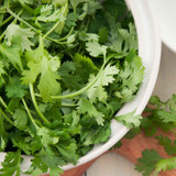 Buy Cilantro & Roasted Onion Infused Olive Oil from Squizito Tasting Room