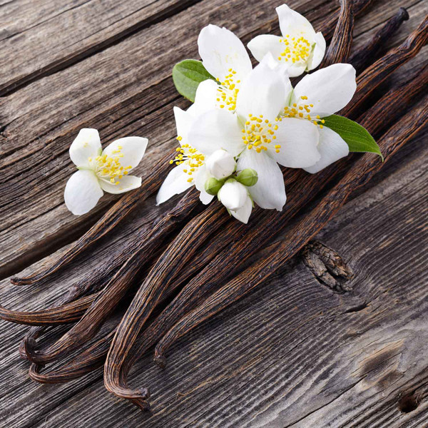 Buy Vanilla Dark Balsamic from Squizito Tasting Room