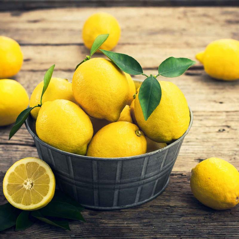 Buy Lemon Fused Olive Oil from Squizito Tasting Room