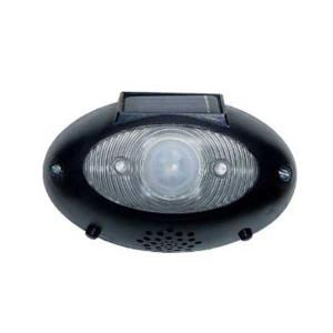 Eyewatch Solar Powered Motion Detector