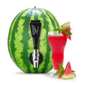 Watermelon Keg Tapping Kit | 2Shopper.com