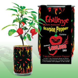 Trinidad Scorpion Pepper  | 2shopper