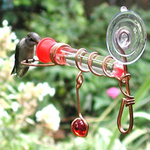 Window Wonder One Tube Feeder