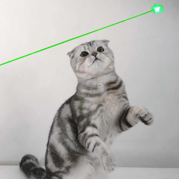 Kaleidoscopic Green Laser Pointer - 30mW