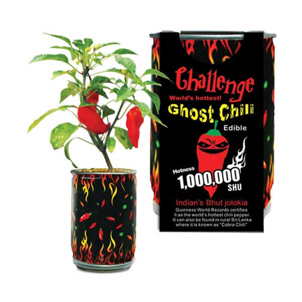 Ghost Chili Pepper In A Can