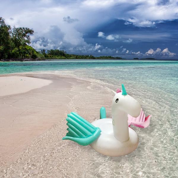 Inflatable Pegasus Float Rainbow