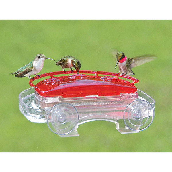 Jewel Box Window Hummingbird Feeder (