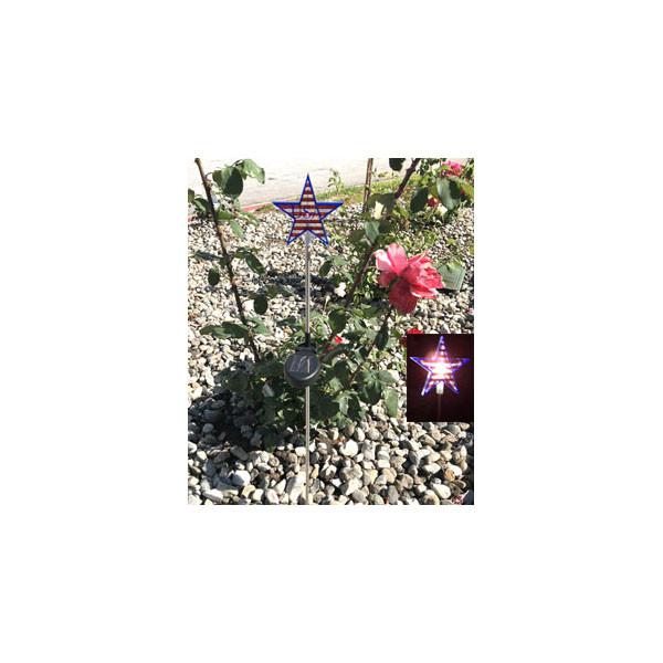 USA Star Solar Powered Garden Stake Light White LED, Set of 2