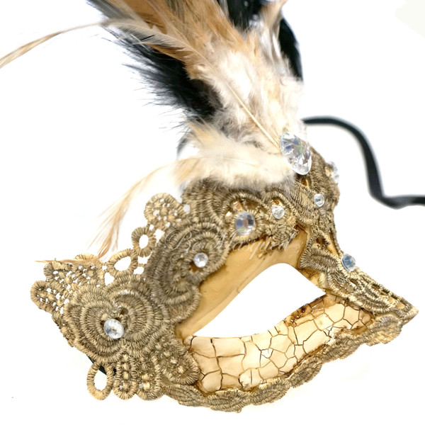 Venetian Feather and Lace Mask