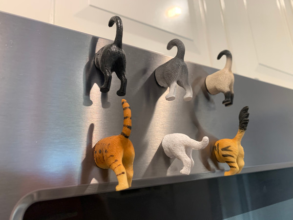 Cat Butt Magnets, Set of 6 (Style B) - Funny Refrigerator Photo Magnets