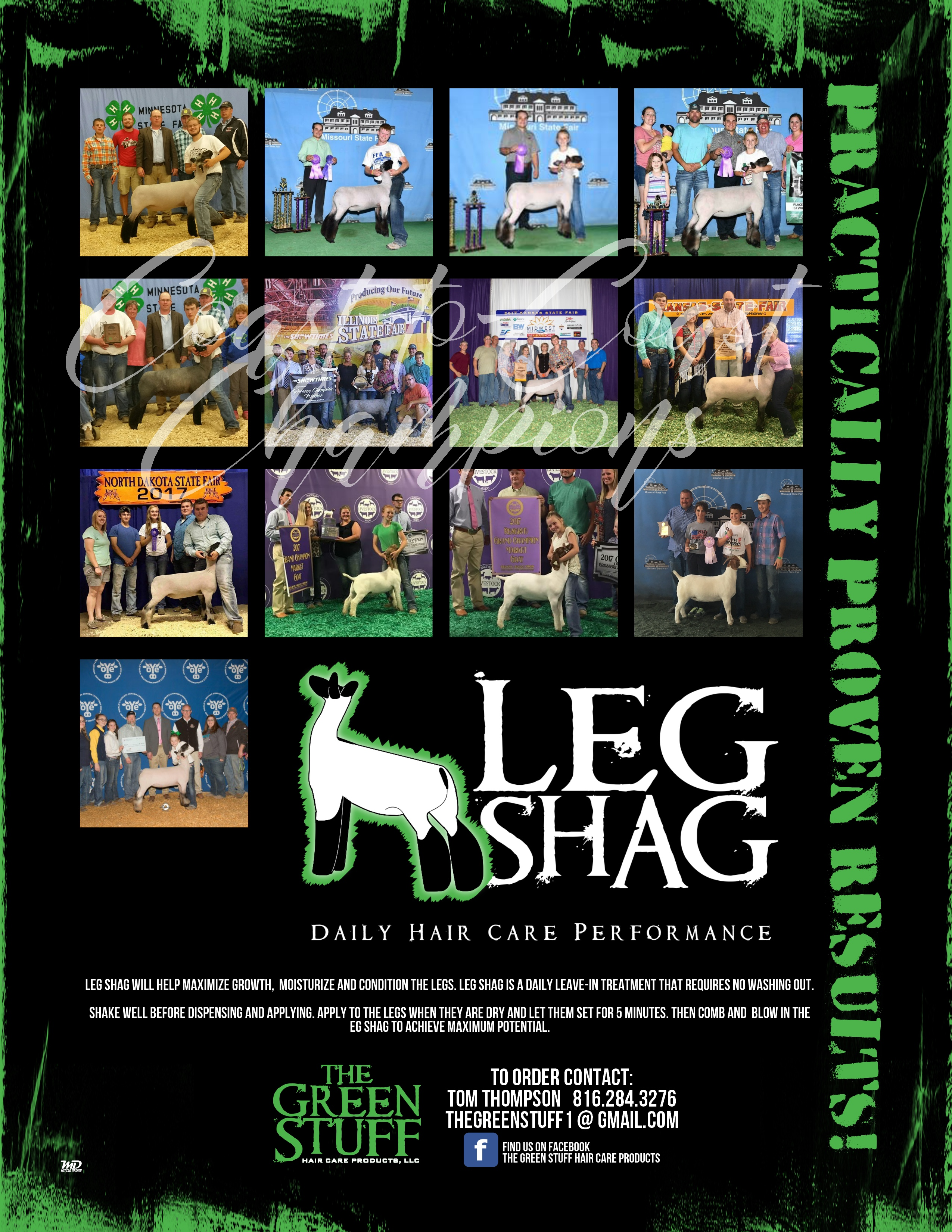 leg-shag-18-spring.jpg