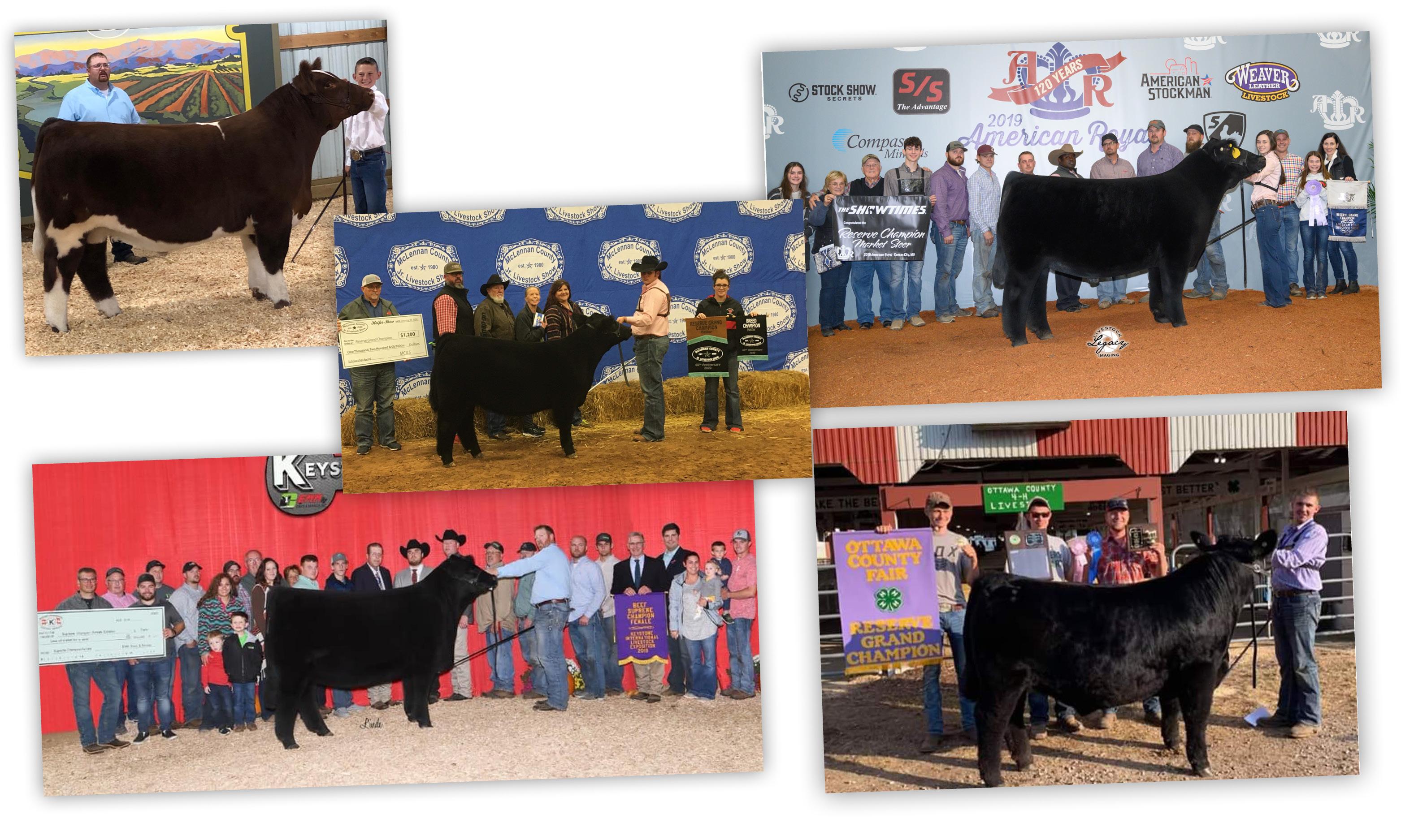 updated-winners-2420.jpg
