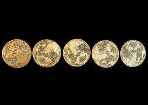 Harvest Moon Bundle 5 Coin Set Solid Brass