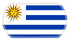 Flag of Uruguay on a dog tag