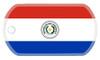 Paraguayan Flag dog tag