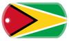 Guyana flag dog tag