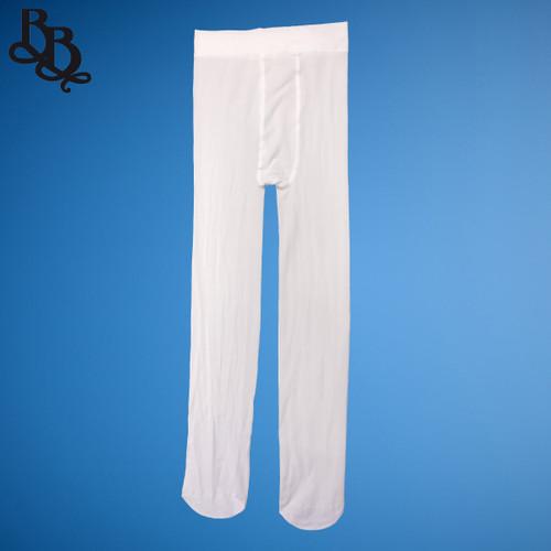W009 White Sheer Stocking Tights