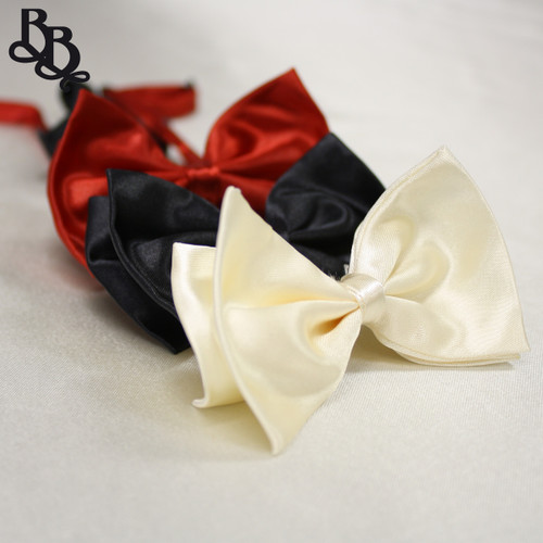 605 Boys Coloured Bowtie