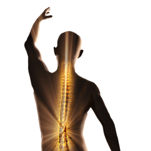 migun-table-body-spine-image-300x300.png