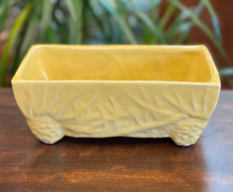McCoy Yellow Pine Cone Planter