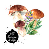 Our Wild Mushroom & Sage Olive Oil contains a delicious combination of fresh, herbaceous sage combined with an array of wild mushrooms including Cremini, Shitake, and Porcini. The result is a rich, savory experience that can be used in many culinary applications.