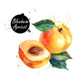 The Blenheim Apricot variety is both sweet and tart with an intensely floral aroma of honeysuckle flowers. We've married the lovely floral characteristics of this apricot with our Ultra Premium White Balsamic Vinegar. The resulting collaboration is bright, clean and absolutely delicious!