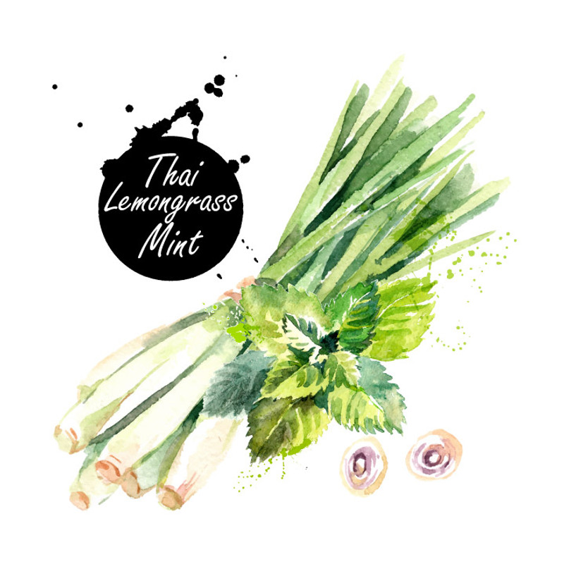 Our Thai Lemongrass-Mint White Balsamic Condimento is tart, crisp, clean and absolutely delicious. The natural flavors of Thai lemongrass and mint weave together beautifully and make a dazzling base for marinades, dressings, with sparkling water and in cocktails.
