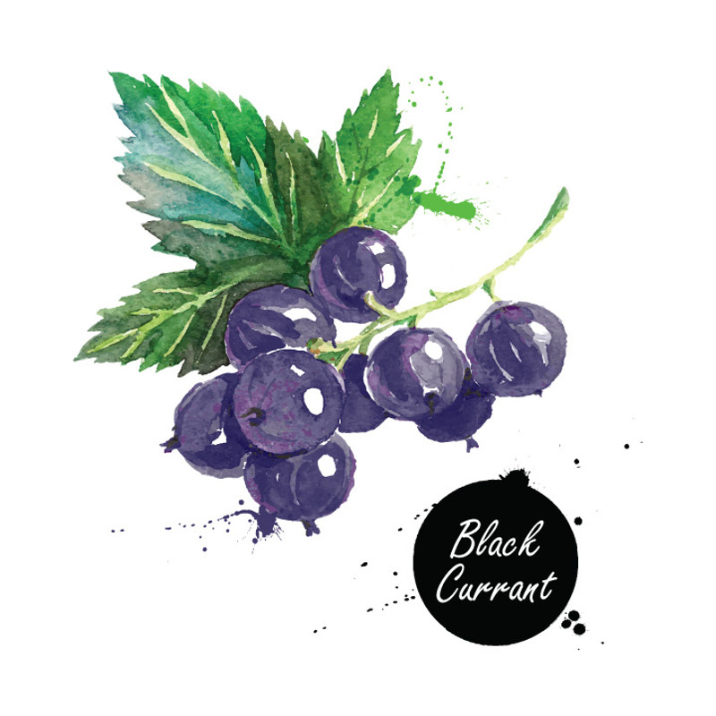Our Aged Balsamic condimento is naturally infused with floral and sweet black currant. This rich, unique balsamic condimento is tart and amazingly complex.