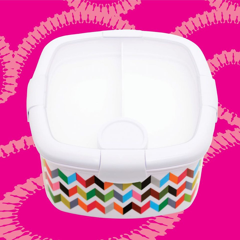 Deluxe Salad Container